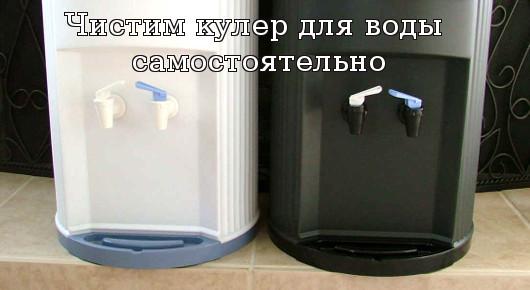 Чистим кулер для воды самостоятельно