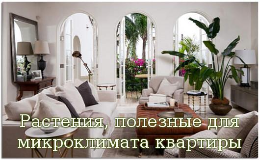 микроклимата квартиры