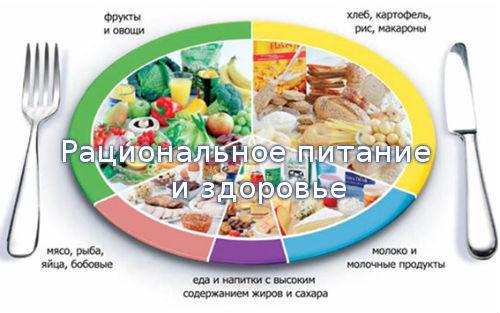 Рациональное питание и здоровье