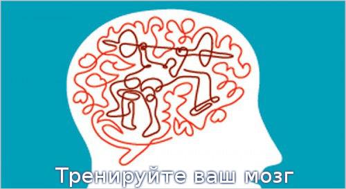 Тренируйте ваш мозг
